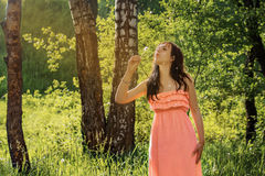 Young girl in park forest blowing on dandelion. Young girl in a pink dress park forest blowing on dandelionsummertime Stock Photos