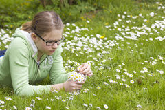 Young girl picking daisies Royalty Free Stock Photography