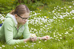 Young girl picking daisies Royalty Free Stock Images