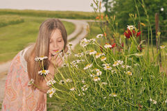 Young girl picking daisy flowers Royalty Free Stock Photo