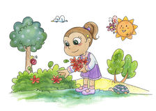 Young girl picking flowers. A watercolor of a young cute girl picking flowers in a wood Stock Photography