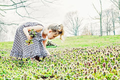 Young girl picking flowers. Young girl  picking flowers in a field of purple henbit weeds wearing a Spring dress Stock Images