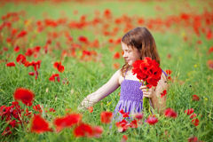 Young girl picking flowers. Young girl picking red poppies in a meadow in a pretty frock in summer sunshine Stock Photo