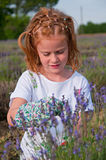Young girl picking lavender. Flowers in the field Stock Photo