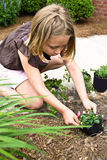 Young Girl Planting Flowers. A young girl at the front of a house planting a flower along the walkway royalty free stock images