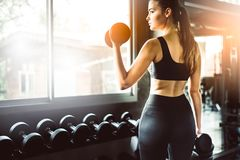 Young girl playing dumbbell to exercise in fitness.Slim girl lifts heavy dumbbell while training in the gym. Sports concept fat b. Urning and a healthy lifestyle stock photos