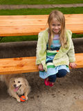 Young girl playing with a little dog. Royalty Free Stock Photos