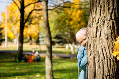 Young girl playing peek a boo Stock Photos