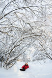 Young girl playing in snow Royalty Free Stock Photography