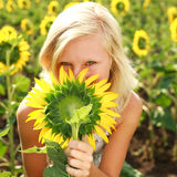 Young girl playing with sunflower Stock Photos