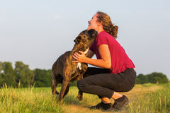 Young girl plays with a boxer dog Stock Image