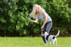 Young girl plays with a dog Royalty Free Stock Images