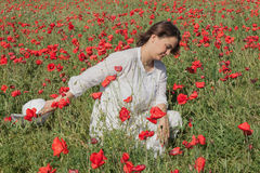 Young girl among poppies Stock Image