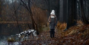 Young girl portrait with her Dalmatian dogs royalty free stock photography