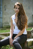 A young girl. Portrait of long-haired young girl Royalty Free Stock Photography