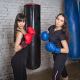 Young girl posing in boxing gloves. Girls work out in the gym hitting Stock Photography