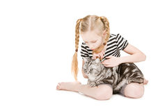 Young girl posing with british shorthair cat Stock Images