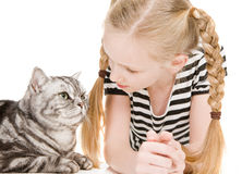 Young girl posing with british shorthair cat Stock Image
