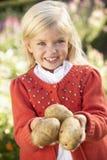 Young girl posing with potatoes in garden Stock Photos
