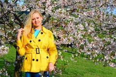 Young girl posing in the sakura garden Royalty Free Stock Photography