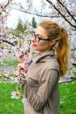 Young girl posing in the sakura garden Royalty Free Stock Images