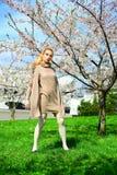 Young girl posing in the sakura garden Stock Photos