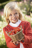 Young girl posing with tomatoes in garden Royalty Free Stock Photo