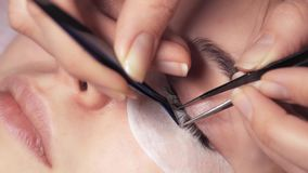 Close-up shot of eyelash extensions. Young girl on the procedure of eyelash beauty salon stock video