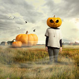 Young girl with pumpkin head, halloween stock photos