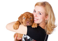 Young girl with puppy of Dogue de Bordeaux Stock Images