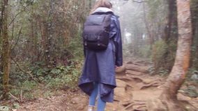 Young girl in raincoat with backpack going on exotic wood trail during travel. Hiking woman walking in tropical wet. Forest. Follow to female tourist stepping stock footage
