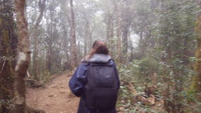 Young girl in raincoat with backpack going on exotic wood trail during travel. Hiking woman walking in tropical wet. Forest. Follow to female tourist stepping stock video footage