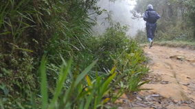 Young girl in raincoat jogging on wood trail during travel. Hiking woman with backpack running in tropical wet forest. Female tourist stepping on the jungle stock video footage