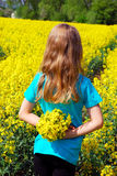 Young girl in rape field Royalty Free Stock Photography