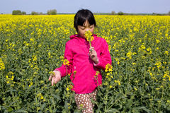 Young girl in rape field Stock Photo