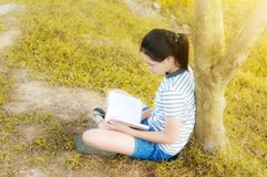 Young girl reading a book in gold meadow contryside nature. In evening light vintage style Stock Photography