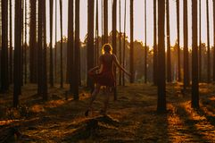 Young girl in red dress staying on the stump on one leg in forest. Young girl in red dress staying on the stump on one leg in evening forest stock image