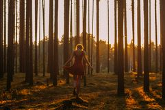 Young girl in red dress staying on the stump on one leg in forest. Young girl in red dress staying on the stump on one leg in evening forest royalty free stock photos