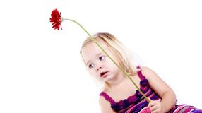 Young girl with a red flower Stock Image