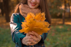 Young girl with red lips stretched in the hands of autumn leaves close-up. Girl with red lips stretched in the hands of autumn leaves close-up Stock Photo