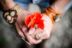 Young girl with red poppy flowers Royalty Free Stock Image