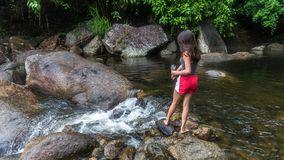 Young girl feeding fish by the river royalty free stock image