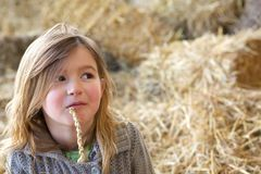Young girl relaxing at farm Royalty Free Stock Image