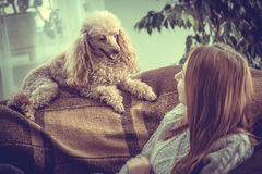 Young girl is resting with a dog . Stock Photography