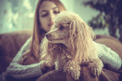 Young girl is resting with a dog . Stock Photos