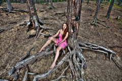 Young girl rests on nature, pine forest, countryside. Royalty Free Stock Photography
