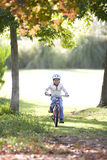 Young girl riding bicycle in park in autumn Royalty Free Stock Image