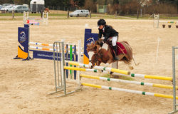 Young girl on the horse at jumping competition Stock Photos