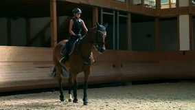 Young girl riding horse in big hall learning to stop stock video footage