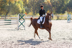 Young girl riding horse in equestrian competition. Young sportswoman riding horse in equestrian show jumps competition. Teenage girl ride a horse Stock Photography